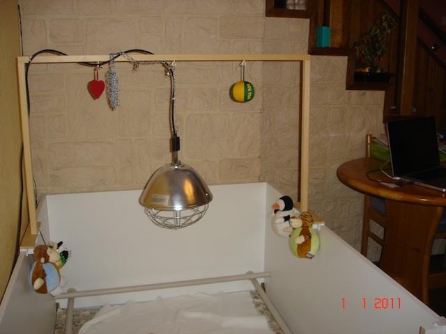 Construction de la caisse de mise bas domaine lorcamour - Lampe chauffante chiot ...